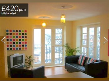 1 double room in modern 2 bed apartment