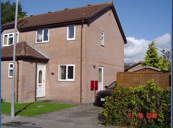 EasyRoommate UK - Room to rent in clean house, Trowbridge - £400 pcm