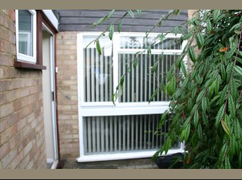 EasyRoommate UK - DOUBLE ROOM IN CHELMSFORD. FROFESSIONAL - Chelmsford, Chelmsford - £430 pcm