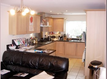 Double in Professional Houseshare in Monkston Park