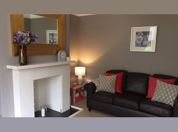 EasyRoommate UK - Room to rent room in professional house share - Sharrow Vale, Sheffield - £369 pcm