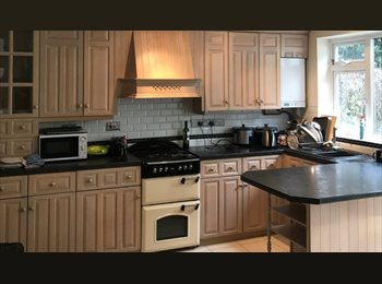 EasyRoommate UK - Chelmsford - new house share 5 mins from station - Chelmsford, Chelmsford - £475 pcm