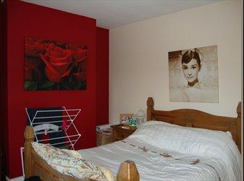 EasyRoommate UK - Fabulous doubleroom in houseshare for female - Summertown, Oxford - £475 pcm