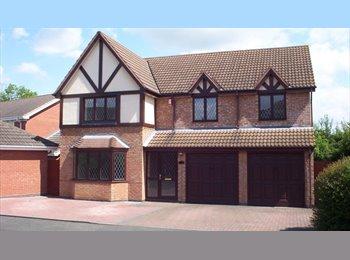 EasyRoommate UK - Bedroom in Friendly Houseshare - Worcester, Worcester - £540 pcm