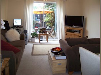 Exeter, double room to let on the Quay