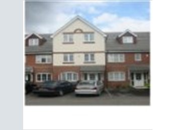GREAT SINGLE in shared town house.
