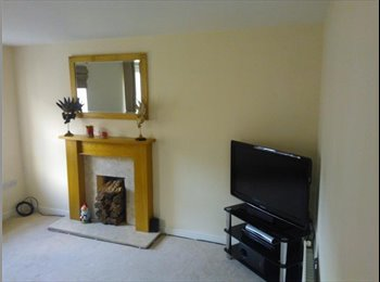 EasyRoommate UK - Nice room, good access to A38, A50, Nestle, Toyota, Burton-on-Trent - £320 pcm