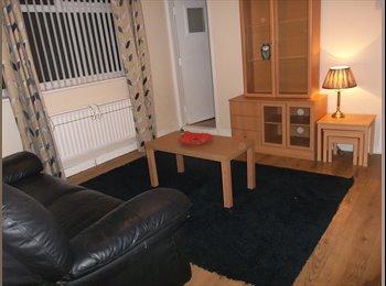 EasyRoommate UK - Ground floor 1 Bedroom Flat, Sunderland - £400 pcm