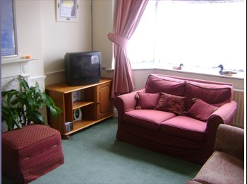 Single room in a clean and tidy  house