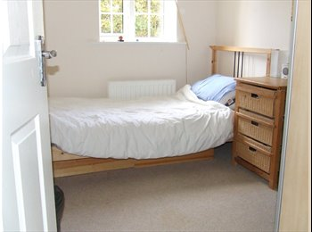 Single room to let in stylish apartment in Bingley