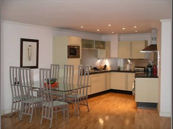 profession wanted to share flat in modern contempory flat...