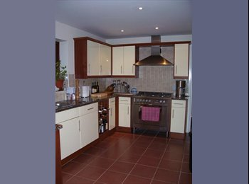 Prof. house 1 double ensuite room, Monday-Friday only