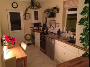 EasyRoommate UK - Large double room. - Plymouth, Plymouth - £450 pcm