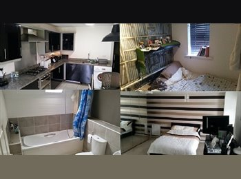 Double Rooms in Prof Shared House Didsbury Village