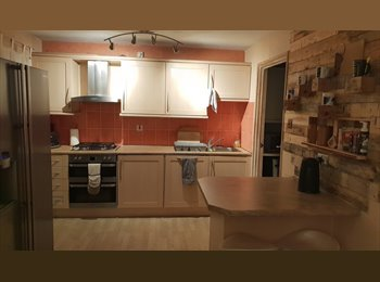 One single room to rent/house share in Bracknell