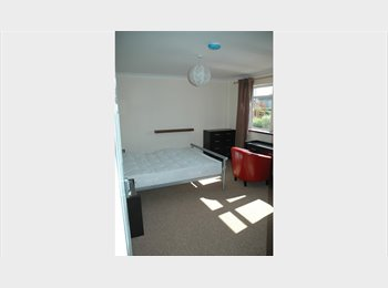 Beautiful  light large double en-suite room