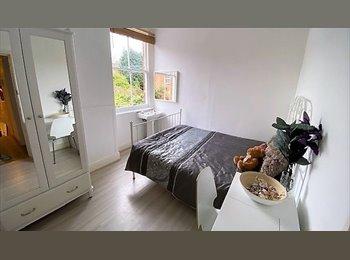 EasyRoommate UK - Double room on Gillott Rd, Edgbaston, Rotton Park - £350 pcm