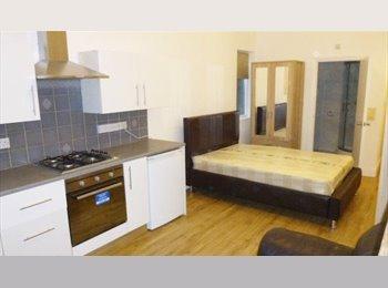 EasyRoommate UK - Large double room, Ladywood - £440 pcm