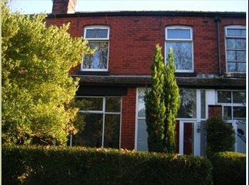 EasyRoommate UK - Bolton - Double room in Houseshare - Bolton, Bolton - £295 pcm