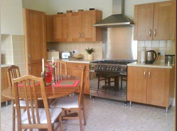 Cleaner, off street parking, wifi, newly decorated,...