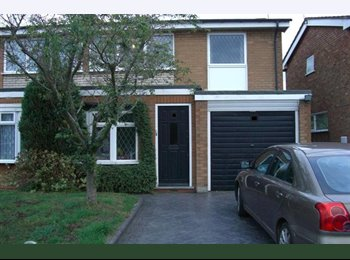 EasyRoommate UK - Single room near the U of B - Selly Oak, Birmingham - £340 pcm