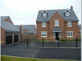 EasyRoommate UK -  Luxury Detached house for Professionals Only - Great Sankey, Warrington - £450 pcm