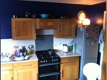 EasyRoommate UK - Double room to rent Aberdeen city centre - Aberdeen, Aberdeen - £400 pcm