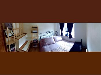 5 Rooms for rent for student accomodation