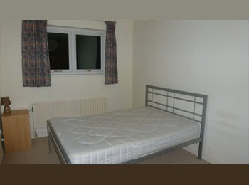 EasyRoommate UK - Room to rent in Bretton for professional - Peterborough, Peterborough - £320 pcm