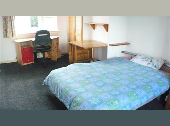 Nice large double room close to University, Research Park...