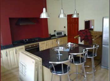 Large double room available in  professional house
