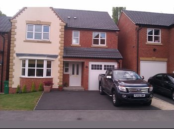 EasyRoommate UK - DOUBLE ROOM TO RENT CLOSE TO WOLLATON PARK - Wollaton, Nottingham - £399 pcm