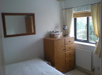 Lovely Room - Wigmore