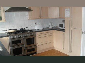 Large Single Room to Rent in Stevenage