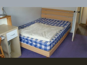 EasyRoommate UK - Ladywood Double room 10 min by bus to New St Station - Ladywood, Birmingham - £300 pcm