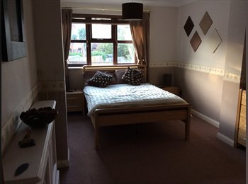 EasyRoommate UK - DOUBLE ROOM TO RENT IN SOUTH WOODHAM FERRERS - South Woodham Ferrers, Chelmsford - £450 pcm