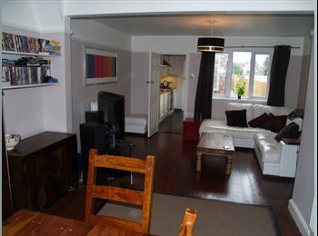 Lovely double room in friendly Cambridge house
