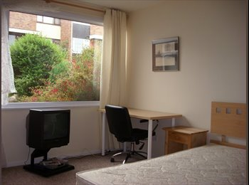 Room in Chilwell Beeston.  Pleasant house share.
