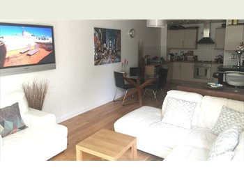 Room to let in a nice big luxury flat in The Hub