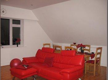 Beautiful flat in Queens Park