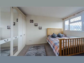 EasyRoommate UK - Fab Room to rent in Grove Hill-SPOTLESS HOUSE !!! - Hemel Hempstead, Hemel Hempstead - £390 pcm
