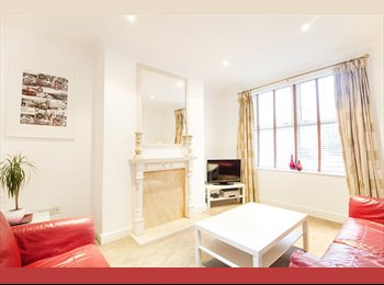 Double room available in a newly refurbished house in...