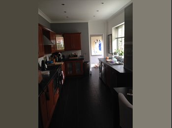 Double room in professional townhouse to rent