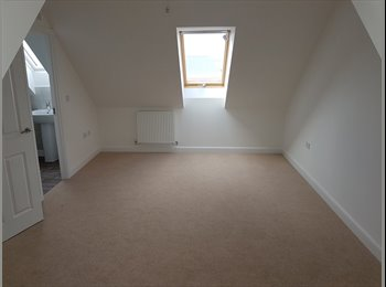 EasyRoommate UK - Double Bedroom with en-suite Bathroom/Shower - Exeter, Exeter - £450 pcm
