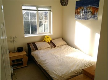 Double Room in Lower Earley, Available Now.