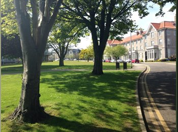 EasyRoommate UK - New flat for professional near to city centre - Old Aberdeen, Aberdeen - £680 pcm