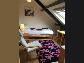 EasyRoommate UK - Comfortable room available now, Sunderland - £310 pcm