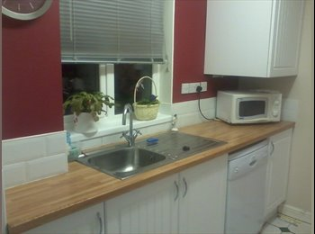 EasyRoommate UK - Double room to rent near warwick university - Canley, Coventry - £360 pcm
