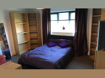 EasyRoommate UK - SUPERB ACCOMODATION AVAILABLE - Wrexham, Wrexham - £380 pcm