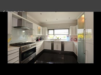 EasyRoommate UK - lovely room in beautiful house in Patcham to rent - Patcham, Brighton and Hove - £575 pcm